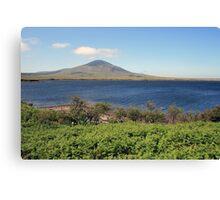 County Mayo landscape Canvas Print