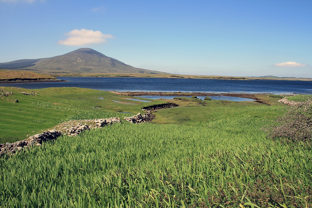 County Mayo landscape 2 by John Quinn