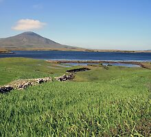 County Mayo landscape 2 by John Quinn