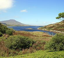 County Mayo landscape 3 by John Quinn