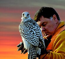 Ralph and his Gyrfalcon by kittyrodehorst