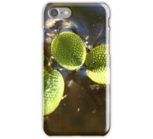 Beautiful Illegal Alien iPhone Case/Skin