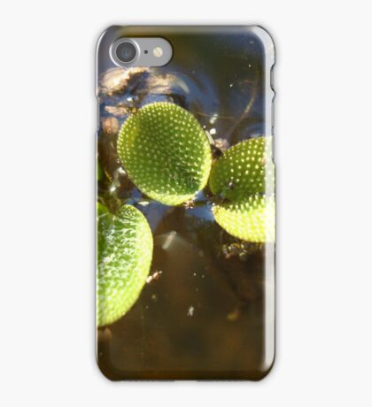 Beautiful Illegal Alien iPhone Case/Skin