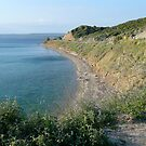 Anzac Cove (From Charles Bean&#x27;s &quot;Spot&quot;) by Ron Marton