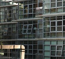 Windows! by Faustina