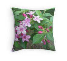 Spring Pinks - Wigelia 3 Throw Pillow