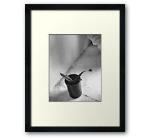 Cactus in a Film Can Framed Print