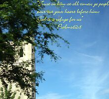 Psalms 62:8 by trisha22