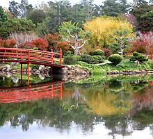 Red bridge and reflections, Toowoomba, Japanese Gardens.Qld by Marilyn Baldey