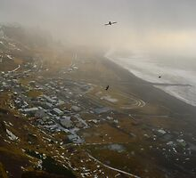 Reynisfjall, Vik i Myrdal, Sudurland, Iceland by Mike Kunes