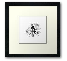 Cute vintage black and white bird flowers pattern  Framed Print