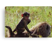 Monkey on My Back Canvas Print