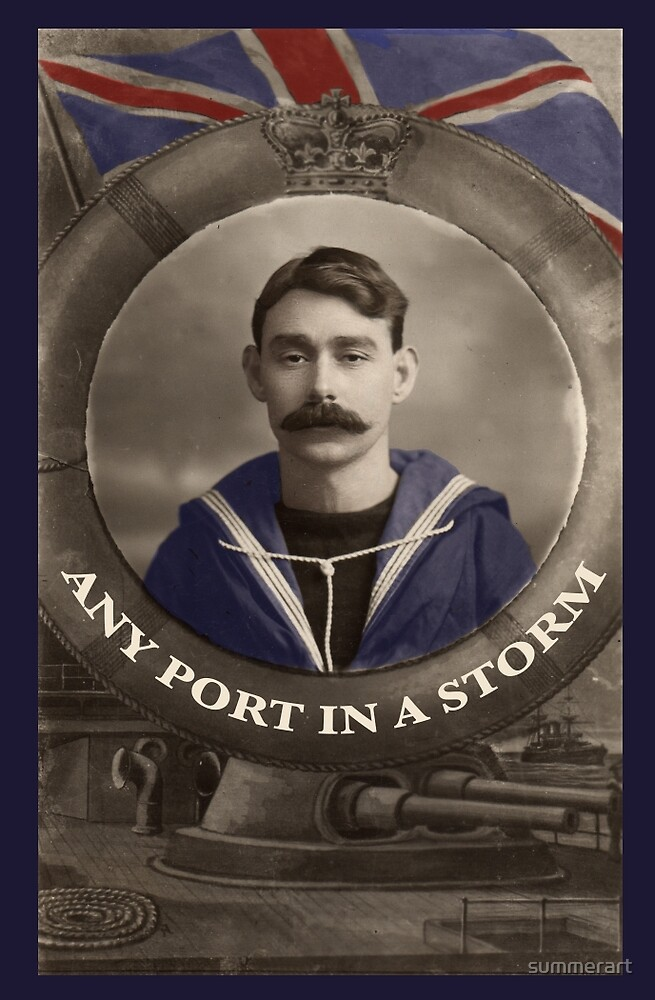 Any Port in a Storm by William Bushell