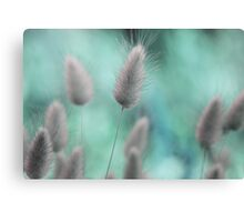 Nature's softness Canvas Print
