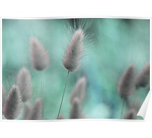 Nature's softness Poster