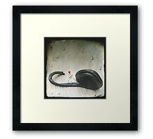 Licorice Framed Print