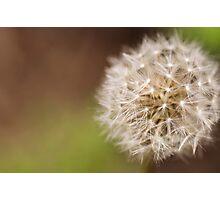 Parachute Ball Photographic Print