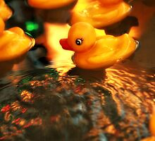 Beautiful Yellow Rubber Duck In Water by terrebo