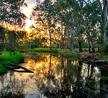 Billabong - Wonga Wetlands, Albury - The HDR Experience by Philip Johnson