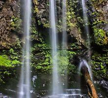 Majestic Hopetoun Waterfall, The Otways, Australia by rowanvh