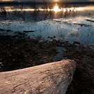 Barr Lake Sunset by Kevin Williams