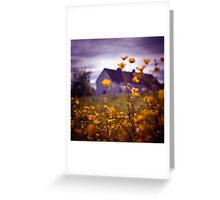 Buttercup Farm Greeting Card