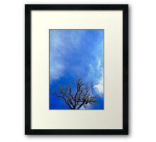 Untitled.00229 Framed Print
