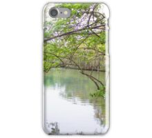 Homosassa Springs iPhone Case/Skin