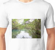 Homosassa Springs Unisex T-Shirt
