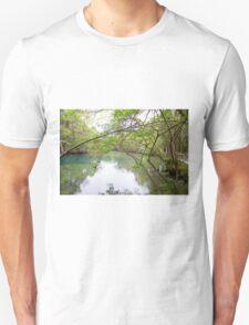 Homosassa Springs T-Shirt