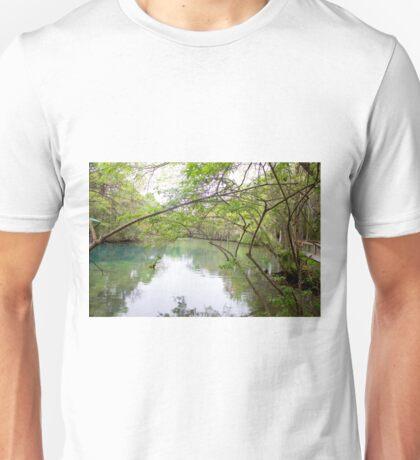 Homosassa Springs Unisex T-Shirt