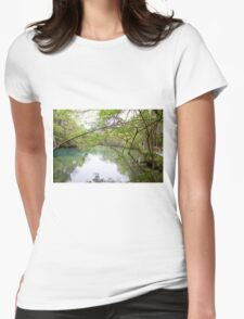 Homosassa Springs Womens Fitted T-Shirt