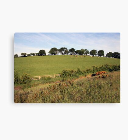 Rural Irish farm scene Canvas Print
