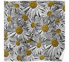 Abstract black and white daisies floral pattern Poster