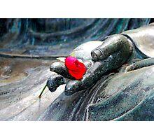 Buddha Rose Photographic Print