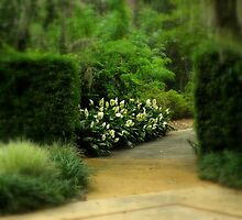 A Wander Through The Gardens ~ Part Two by artisandelimage