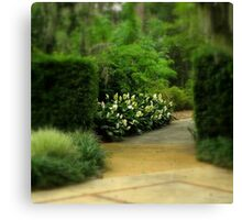 A Wander Through The Gardens ~ Part Two Canvas Print