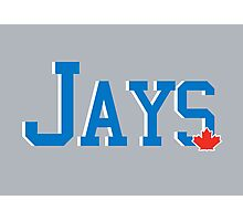 Blue Jays Text Photographic Print