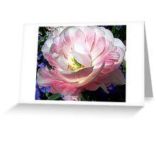 My Favorite Flower Shot Greeting Card