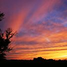 Kentucky Sunset by Victoria DeMore