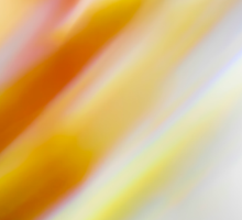 Abstract brilliant colorful abstract in yellow and white  Sticker