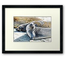 I'm Ready for My Close-Up Mr. DeMille Framed Print