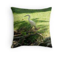 Snowy Egret 2 Throw Pillow