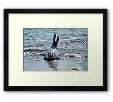 Come Out And Plaaayyy Framed Print