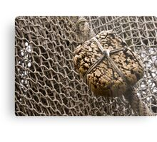 Cork Floater Metal Print