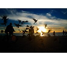 Birds in the sunset Photographic Print