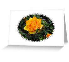 Rose on Leaves Greeting Card
