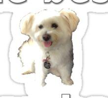 Lola is the best Sticker