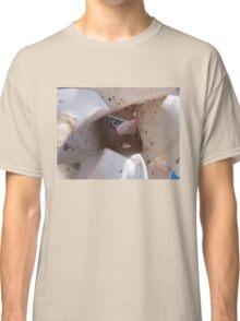 stone climb Classic T-Shirt