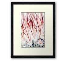 Delicate Florals Framed Print